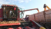 Bakan Pakdemirli traktörün başına geçti