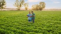 PepsiCo tarım uygulamalarını 28,3 milyon dönüme çıkaracak