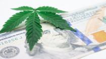 Dünya uyuşturucu ticareti ile çalkalanıyor: İtalya ve Hollanda'da 7 tonun üzerinde uyuşturucu ele geçirildi